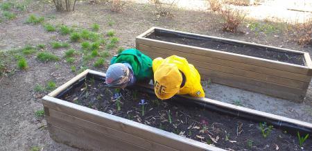 Wiosna w ogrodzie przedszkolnym!